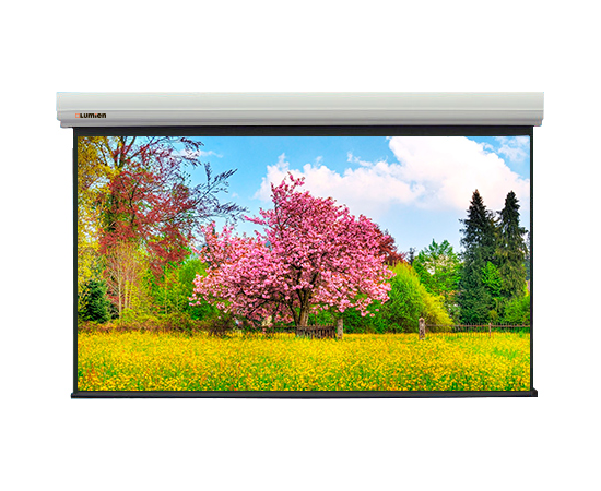 Проекционный экран Lumien Master Large Control LMLC-100121 с электроприводом, 642x1010см — фото 1